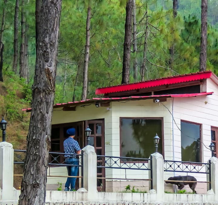 1 Jungle Hut for 2 Persons at PVR, Kasauli-101