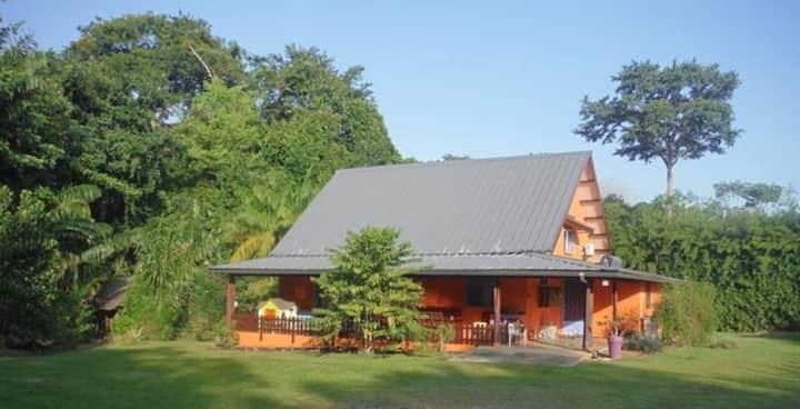 Grande maison dans parc arboré