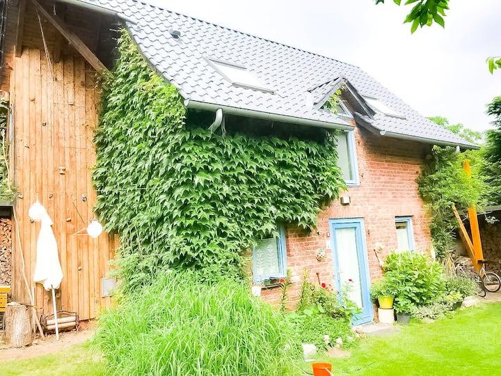 Gemütliches Ferienhaus am Müritz Nationalpark