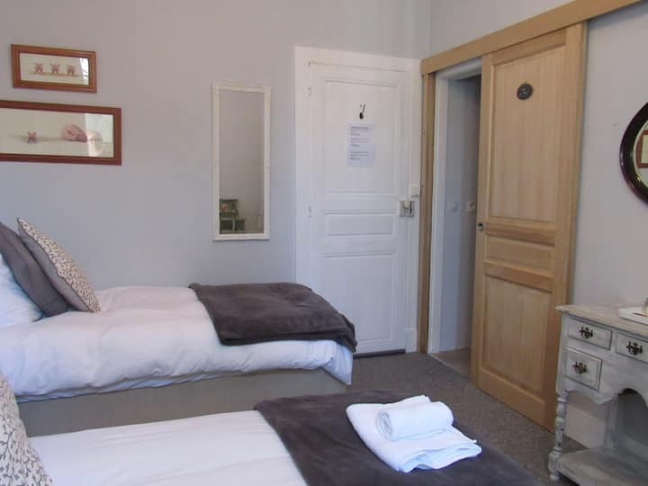 Les Deux Rives room 3 with 2 single beds