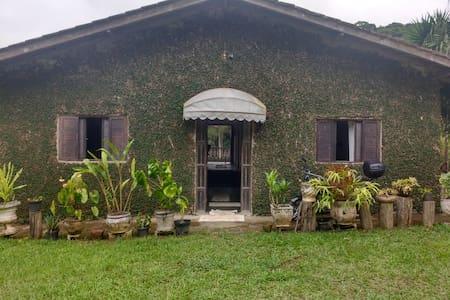 Entrada da casa com porta de 82 cm.