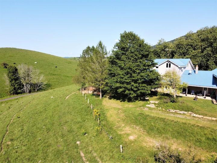 Spacious Farm with Mountain Views 30min to Bburg