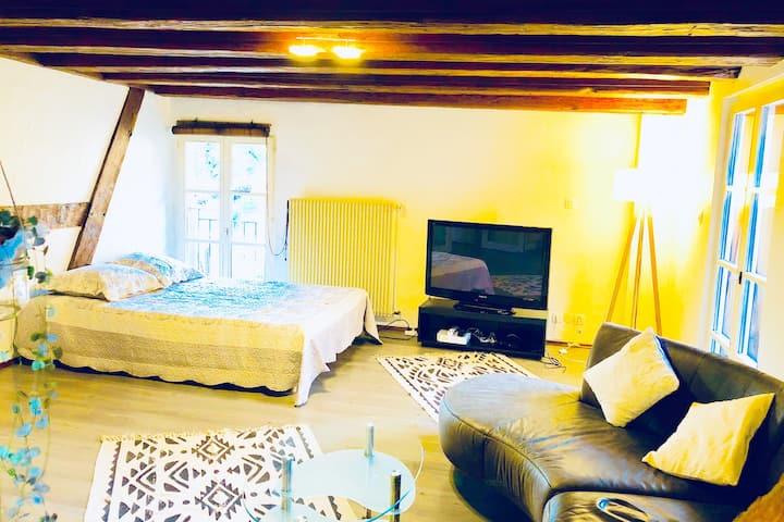 Spacieux appartement alsacien + grande terrasse