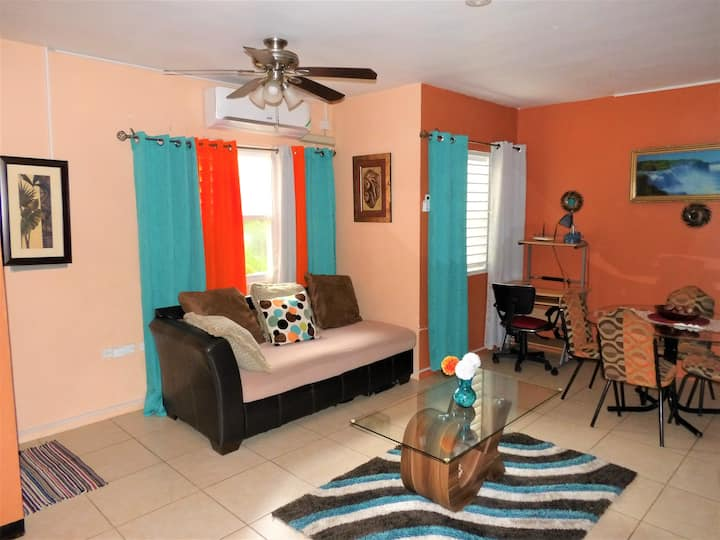 Your Cozy Comfy & Safe 2 Bedroom Apartment