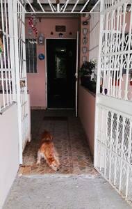 Entrada principal de la casa sin escalones.
