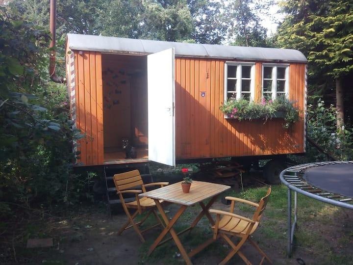 Wohnen im Bauwagen - grün, ruhig und zentrumsnah