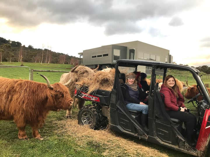 Highland Getaway Spa suite with Farm tour included
