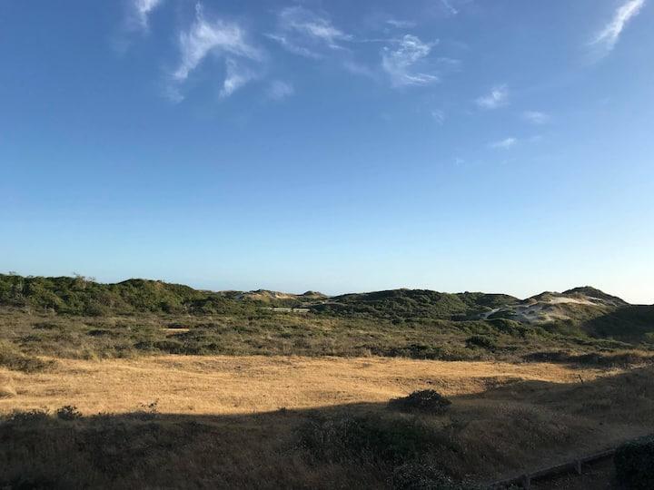 Appartement face aux dunes