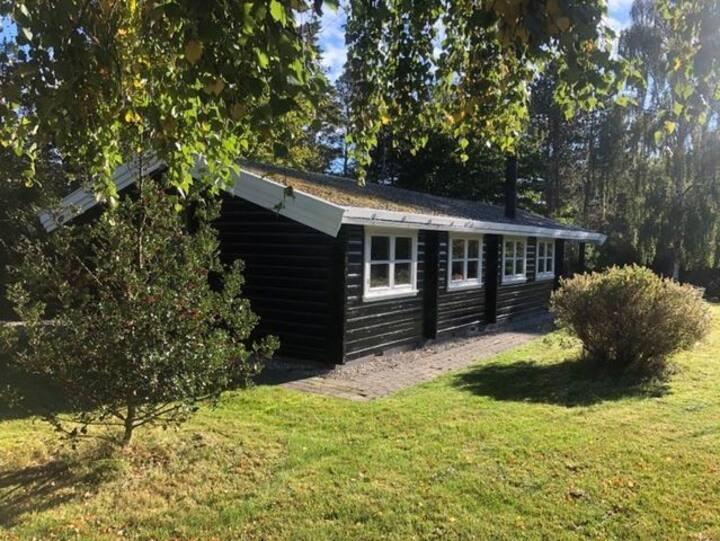Log Cabin north of Copenhagen