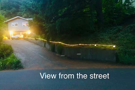 A string of LED lights stretches 100 feet from the street to the steps leading up to the front door. Motion detector lights will illuminate as you walk up the driveway.