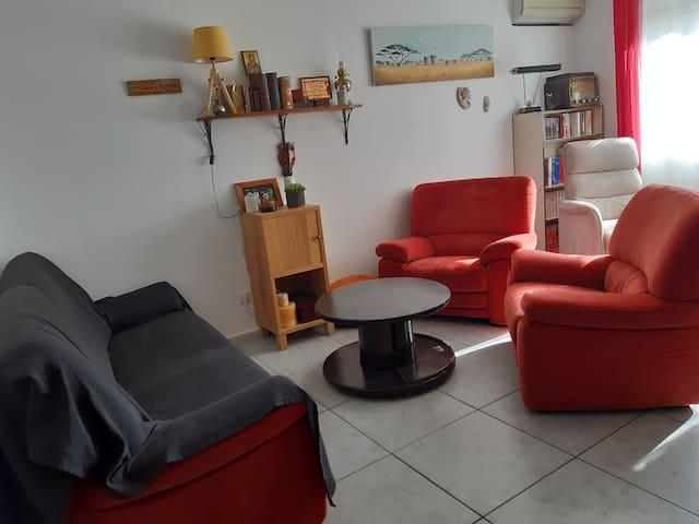 Le salon coté rue (canapé convertible)