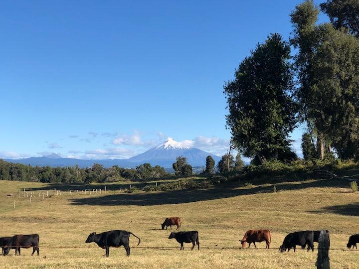 Cabaña 2 Rancho por Lago Rupanco y Patagonia Trail