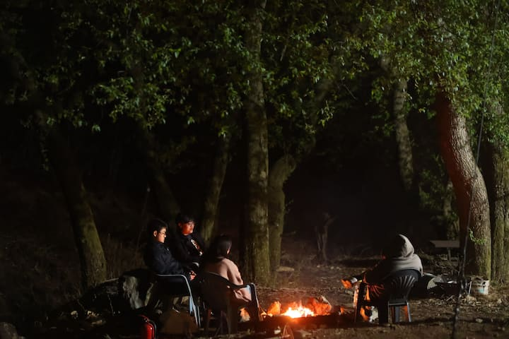 숲속의 오두막......숙박사진관,M-shelter #3 /Cabin in the wood