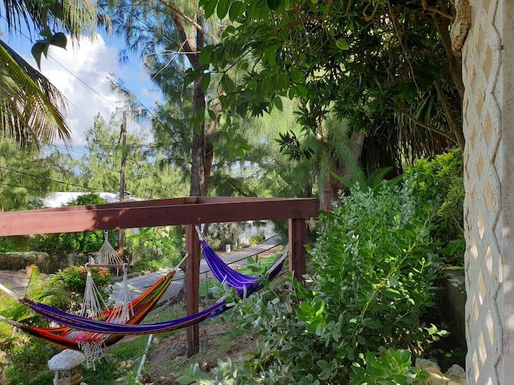 Oshun Ocean Sanctuary, East Coast, Barbados