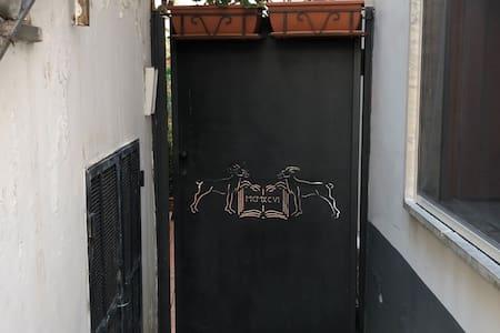 Il cancello di ingresso preceduto da uno scalino che si scorge dalla foto che segue effettuata dal lato opposto all'ingresso