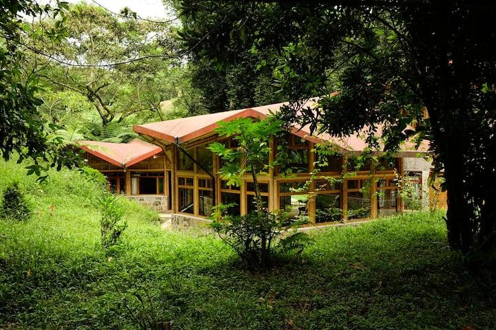 Tosepan Kali's eco hostel