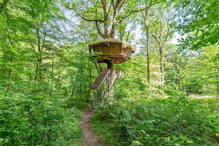 Cabane Az Alom - treehouse l'Arbre à Cabane nature