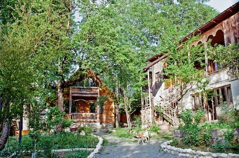 Pine Tree Home