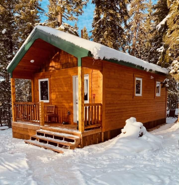 Mama Bear NEW cabin, river view, spray disinfected