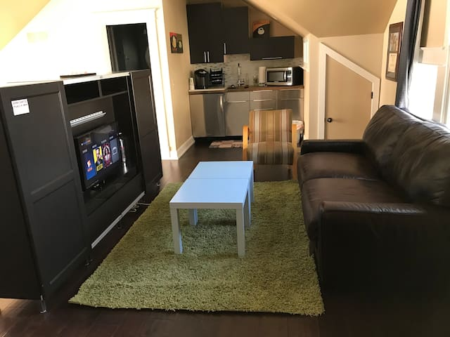 Living Area with TV and Sofa Bed