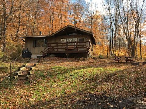 Camp David: Cozy Allegheny Forest Retreat