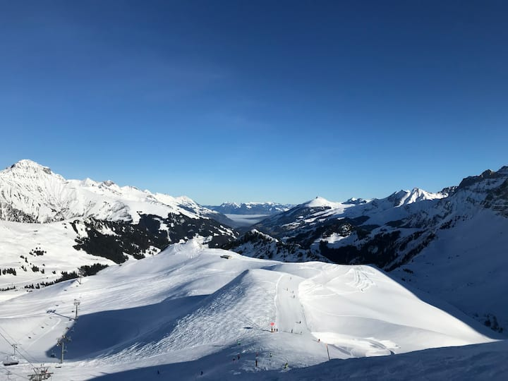Apartment: skislopes and hiking, close to Gstaad
