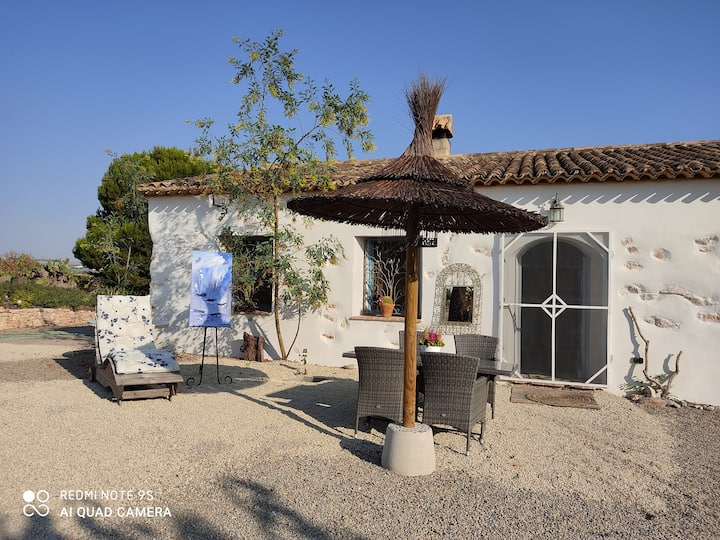 Artist home at the heart of almond trees