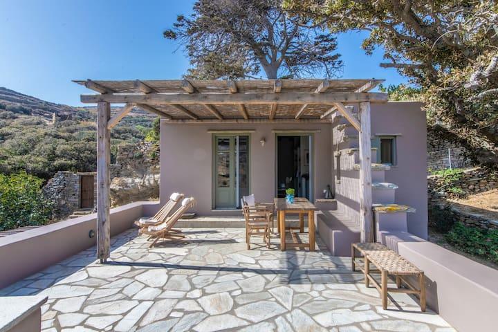 Oak cottage - Tinos