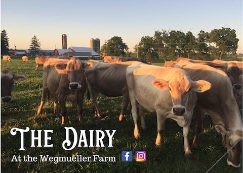 The Dairy at the Wegmueller Farm