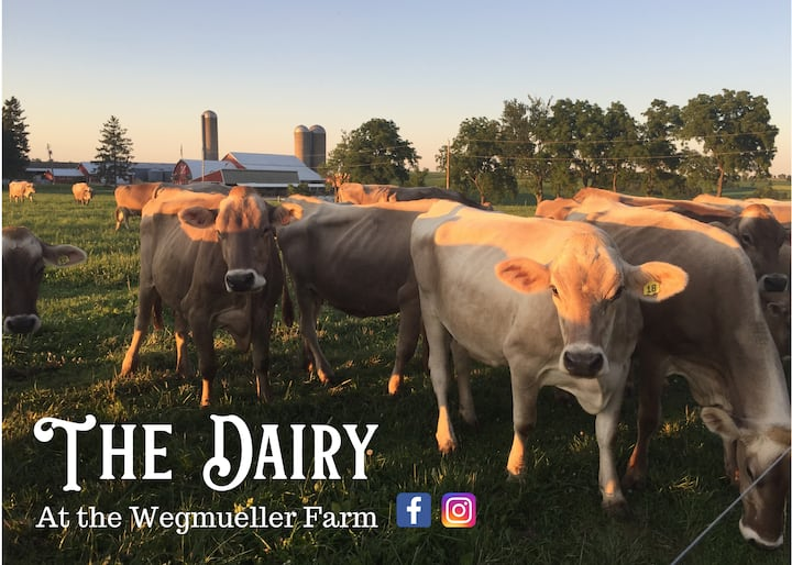 The Dairy at the Wegmueller Farm