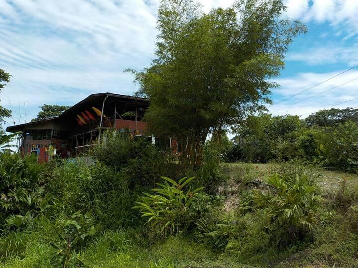 Kayak Hostel Ecuador el Oso perezoso