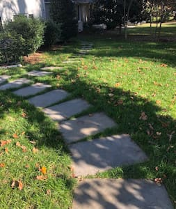 "Stepping stones are separated by 1-4"" of grass and curve slightly."