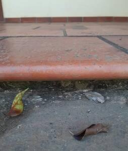 Degrau da varanda para o pátio de pedras São Tomé  altura 7 cm