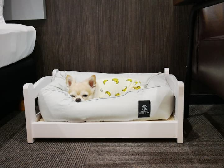 【Small dog pet allowed】Deluxe Room -京都Ranz 三条Ogawa