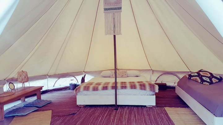 Comfy bell tent in a cork oaks forest