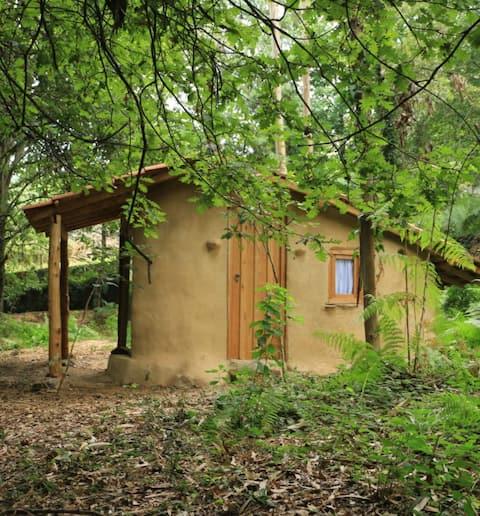 Eco Tiny house  *XVIII century eco-farm*!