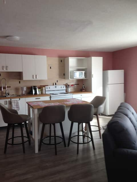 Cozy Central 2 bdrm North Battleford Apartment