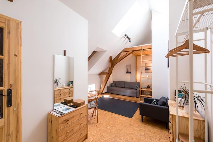 Farmland Pnovany, Loft apartment, 5 people