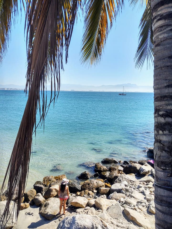 Vamos a la Playa (1)