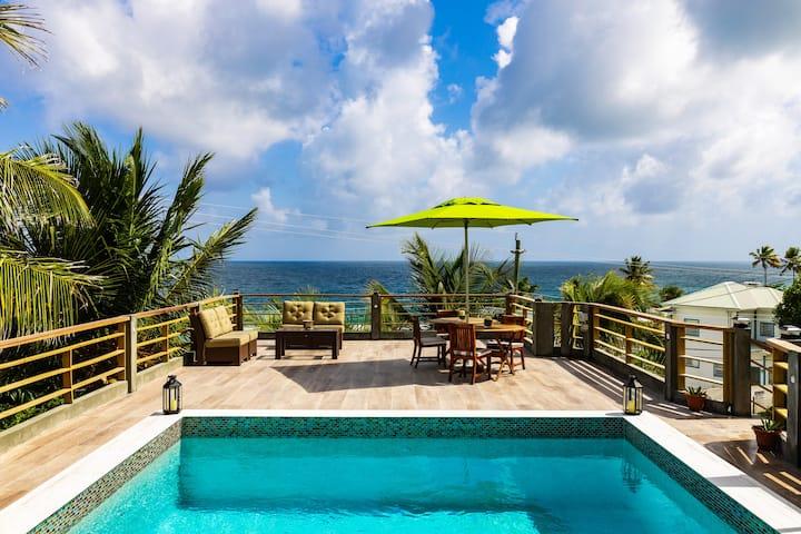 Atma Island Living Villa