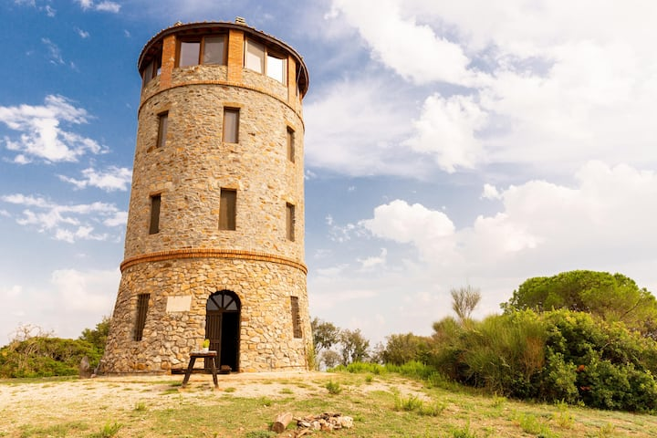 Ancient Tower In Nature Reserve