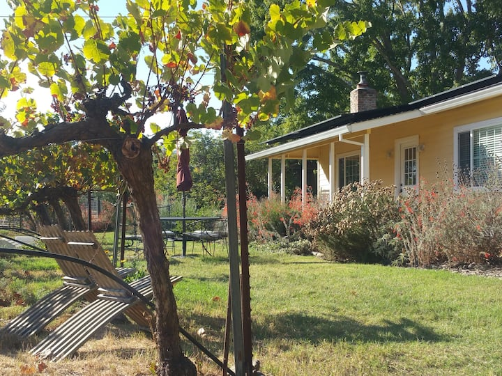 Sonoma Vineyard Cottage - welcome to wine country!
