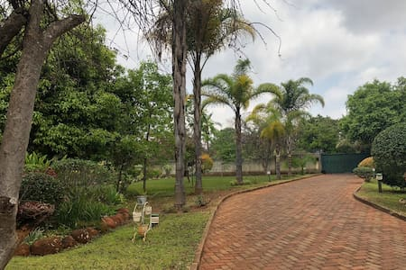 Driveway and pathway to main entrance