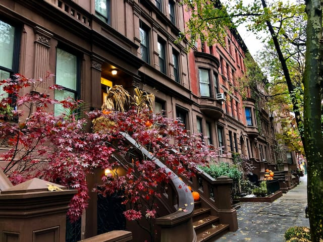 Cozy Brownstone w/Terrace-Next to Central Park