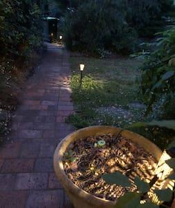 Movement sensor light on pathway, small dark spot coming around corner, small solar lights.
