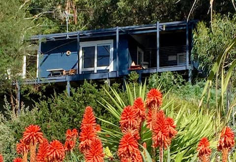 Fad's Surf Shack, where the forest meets the sea