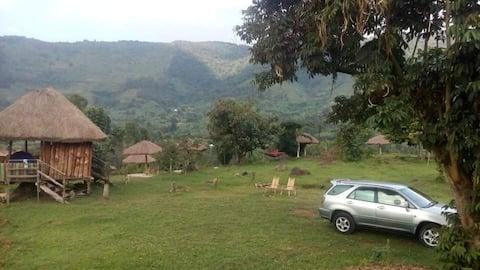 Bwindi nature view campsite