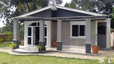Grey Scale Guest house