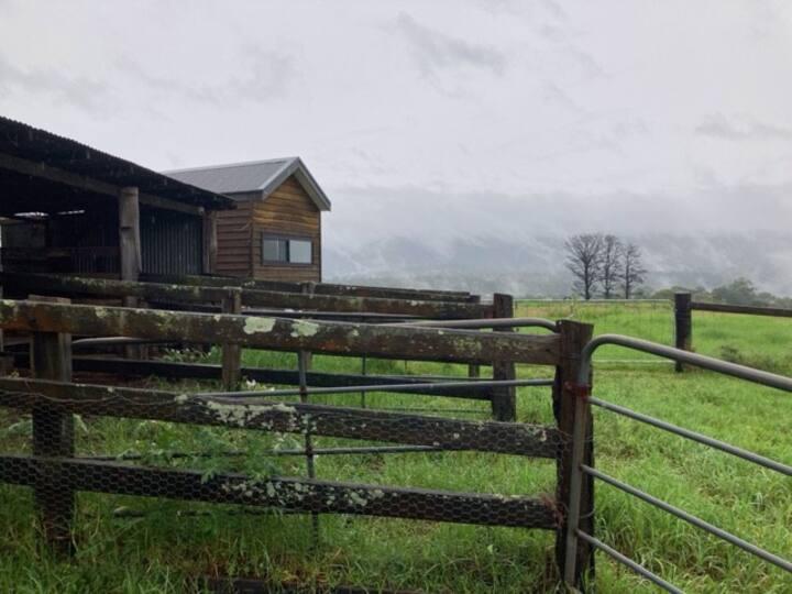 """"""" Tiny Home......BIG Views"""