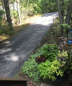 Parking located off street by mailbox. Walk down this driveway to access steps to studio